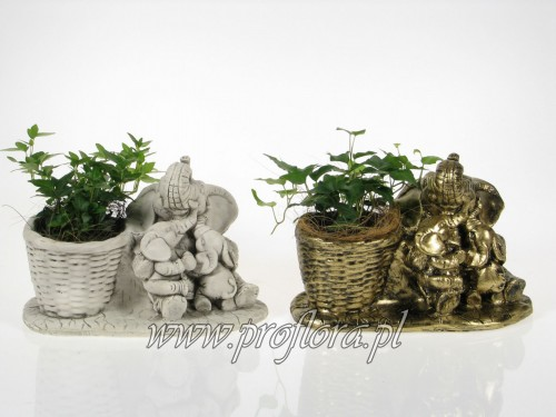 banda słoni (słoniowa rodzinka) dekoracja kwiatowa