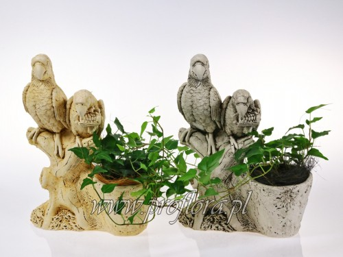 kompozycja kwiatowa papugi - produkcja Proflora