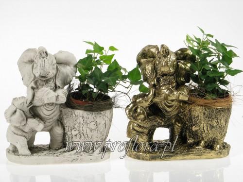 kompozycje kwiatowe słonie stojące - Proflora