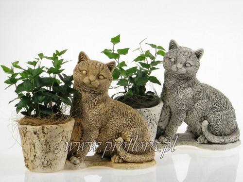 kotek średni dekoracja kwiatowa