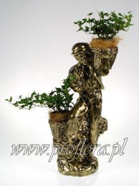 kwiaciarz dekoracje kwiatowe - producent Proflora