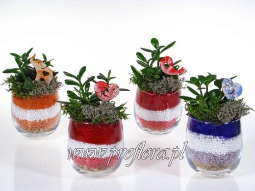 buncol mały sucul Walentynkowy ikebana - od producenta