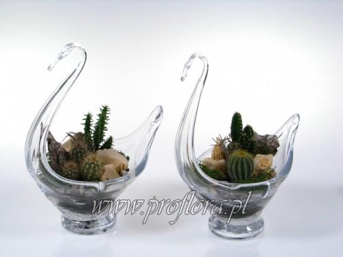 łabędź kaktus kamienny dekoracje kwiatowe
