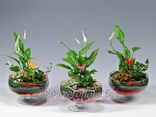 dekoracje kwiatowe misa na stopce - Proflora
