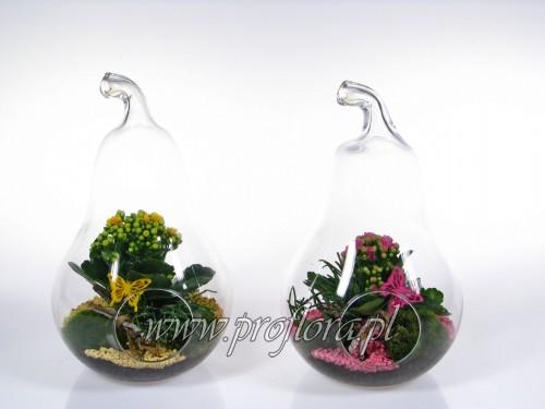 gruszka średnia kompozycje kwiatowe - produkcja Proflora