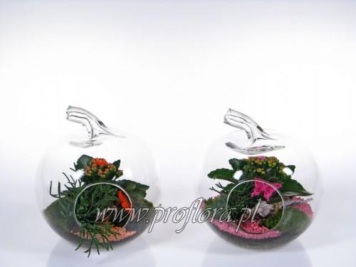 jabłko małe średnie dekoracje kwiatowe - producent Proflora