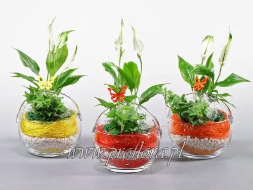 koszyk mały 56 kompozycje kwiatowe - od producenta
